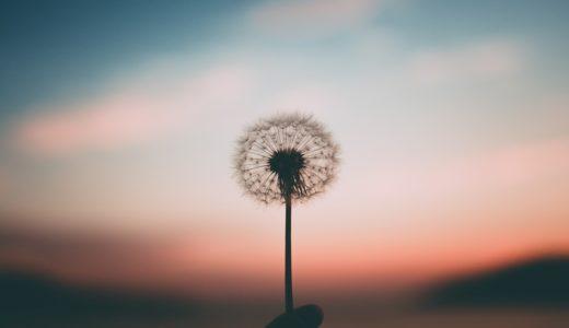 イライラしたら鼻呼吸!瞑想よりも簡単で最強な、心を落ち着ける方法